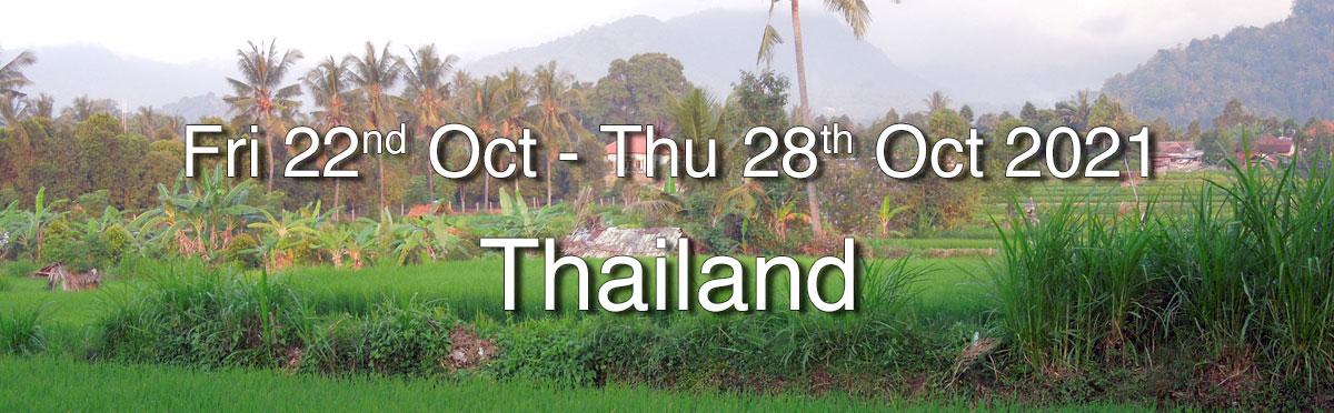 Heart of Qigong Retreat - Chang Mai, Thailand 2021